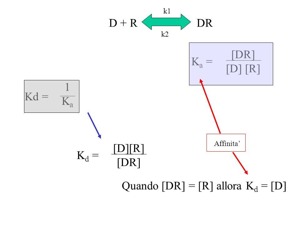 Quando [DR] = [R] allora Kd = [D]